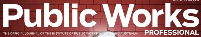 Public Works Professional