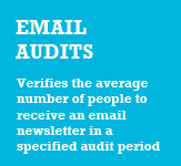 Newsletter Audits