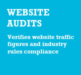 Web Audits